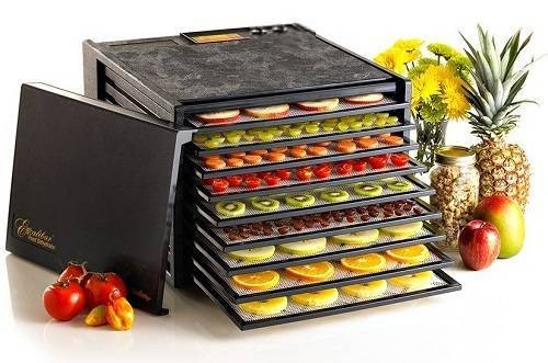 Excalibur 3926TB Best Food Dehydrators