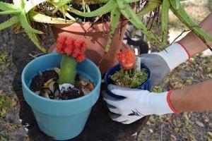 AmazingStuffForYou Premium Grade - Best Gardening Gloves