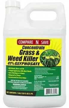 Compare-N-Save Concentrate Best Weed Killer
